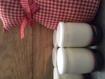 Morganemamanpoule j ai test pour vous - Fabrication de yaourt maison ...